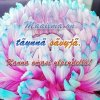 Värikäs kukka, teksti Maailma on täynnä sävyjä
